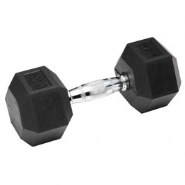 Dumbell Hex Rubber 10Kg GEARS